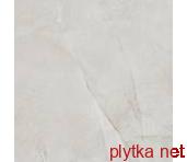 Керамогранит T60041PL1 Peak Light Grey, напольная, 600x600 серый 600x600x0 полированная